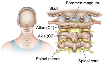 I am looking for the exact frequency for the Atlas (first cervical ...